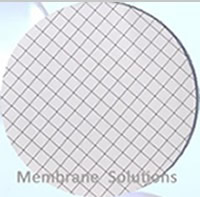 MCE gridded Membrane Filter
